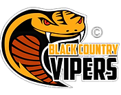 viper no background_edited.png