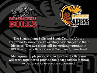 Vipers and Bulls Collaborate