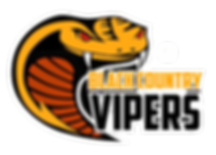 viper no background.png