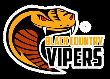 viper no background.png