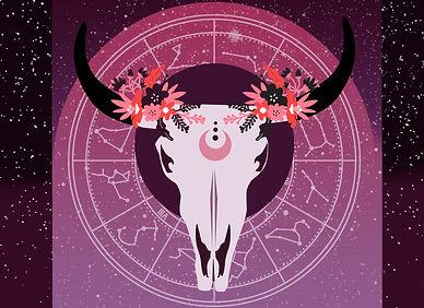 astrology bull.jpg
