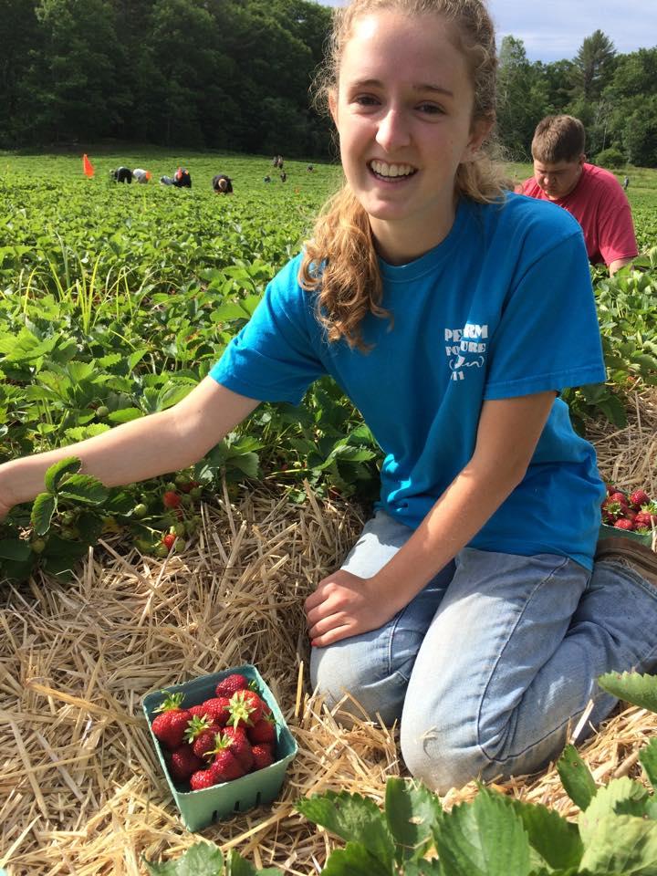 Alana Picking Strawberries