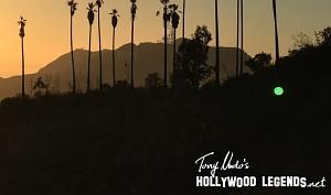 Hollywood Sunrise Wallpaper