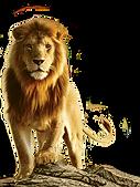 lion-transparent-1.png