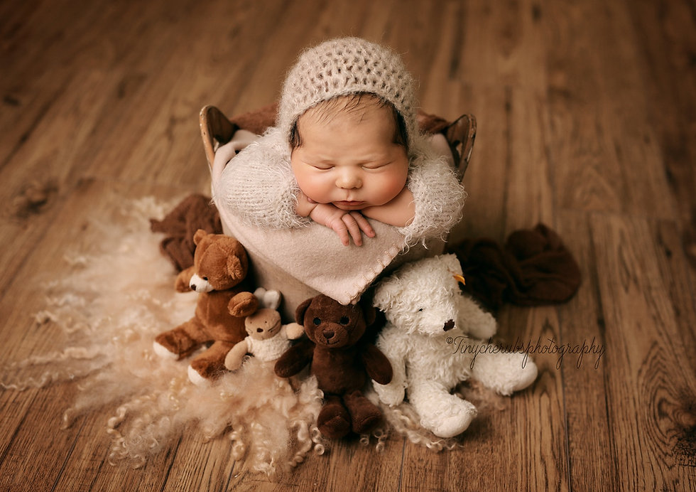 newbornbrownbucket.jpg