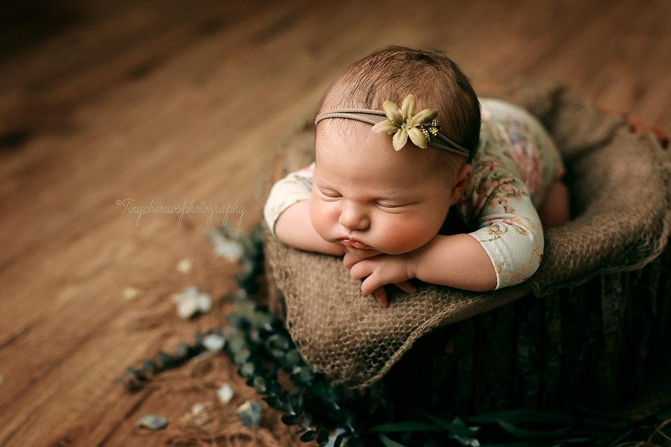 newbornbucket.jpg