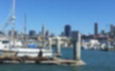 サンフランシスコ海