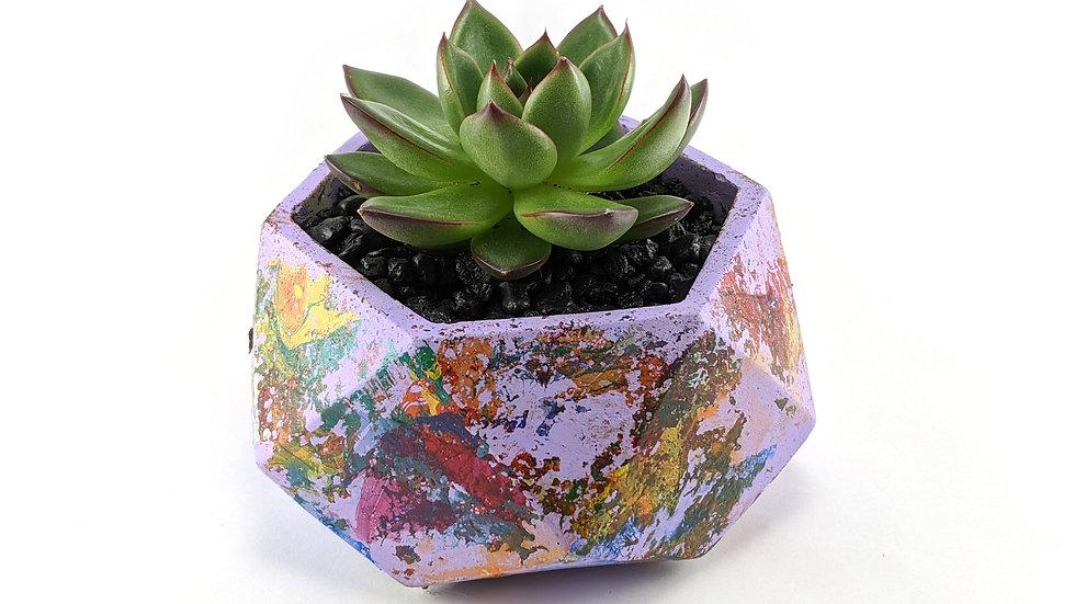 Swirled Painted geomatic hexagon succulent planter