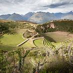 lead-terrace-sacred-valley-peru.adapt.19