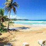 red-frog-beach-isla-bastimentos.jpg