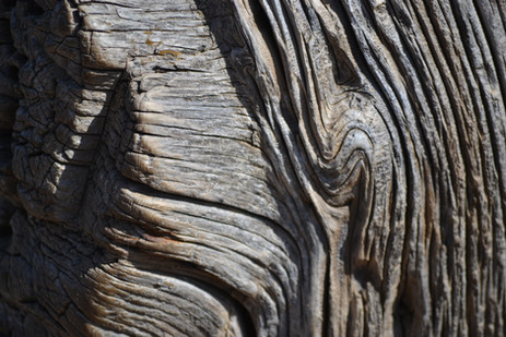 Wooden post.JPG