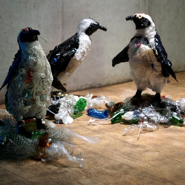 Planeta albo plastik