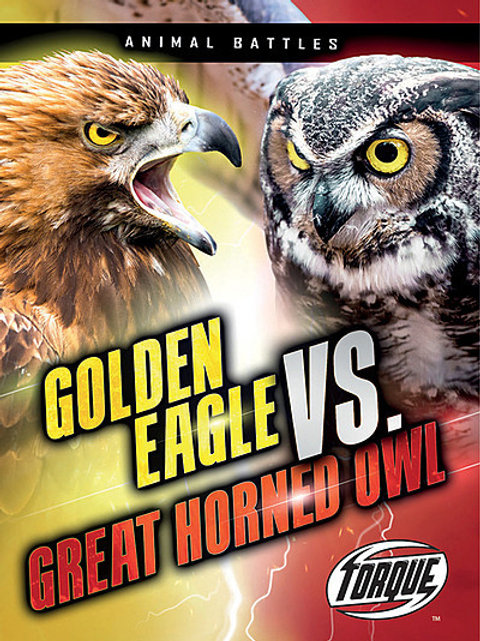 Golden Eagle vs. Great Horned Owl