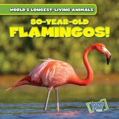 80-year-old flamingos!
