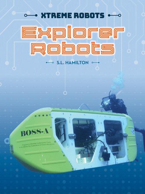 Explorer robots