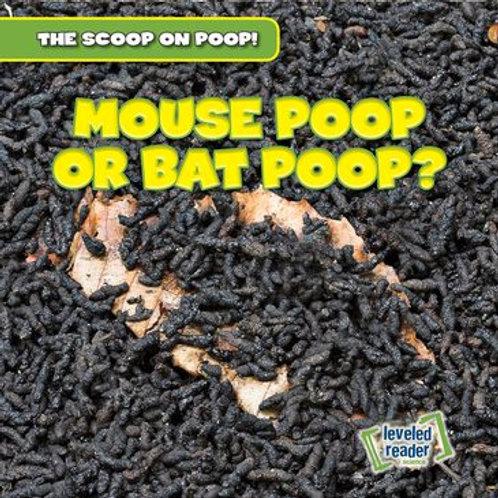 Mouse poop or bat poop?