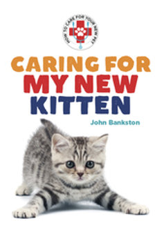 Caring for My New Kitten