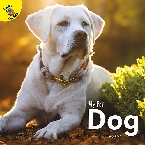 My pet dog