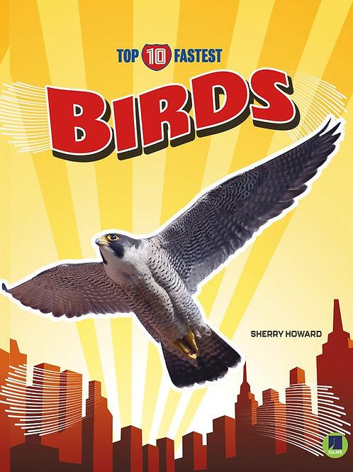 Top 10 fastest birds