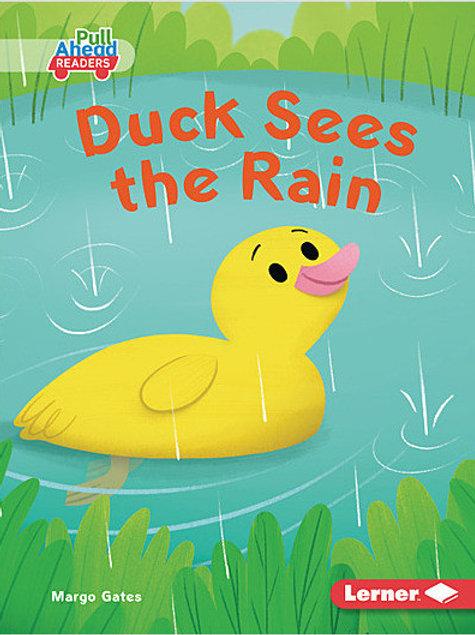 Duck Sees the Rain