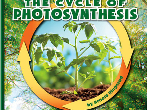 The Cycle of Photosynthesis