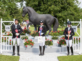 Young horses show great potential again