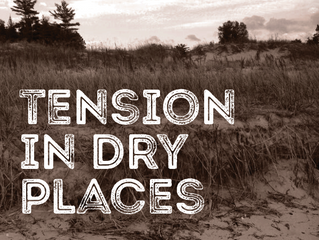 Lenten Meditation II: Tension in Dry Places