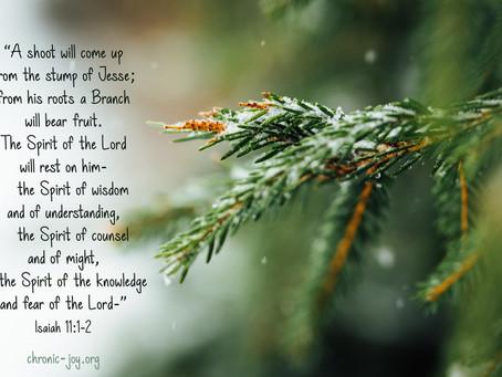 Devotional: December 22, 2020