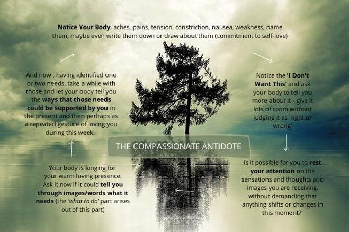 The Compassionate Antidote.jpg