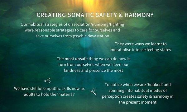 Somatic Safety & Harmony.jpg