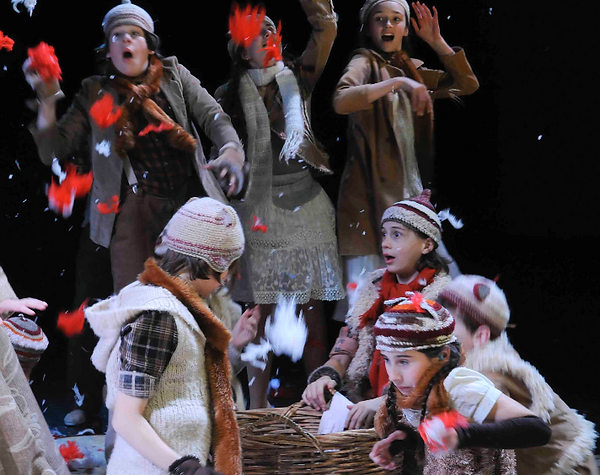 The Cunning Little Vixen (Sydeny Chamber