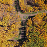 Aspen Hills Fall Colors
