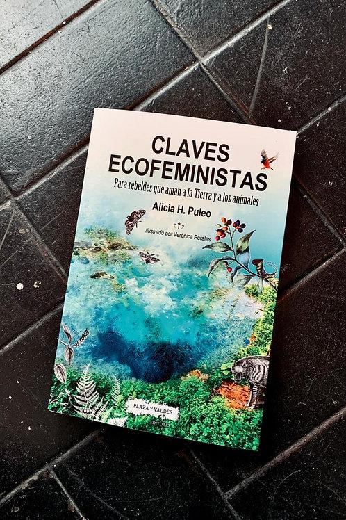 Claves Ecofeministas