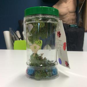 KS2-4 Dream Jars art, creative writing