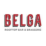 Belga-logo_official.jpg