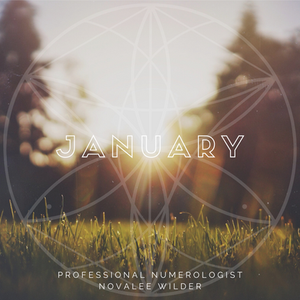 Sunrise over a field of grass with blurry trees in the background. The word JANUARY written across in capital letters. The Numerology Forecast by Novalee Wilder