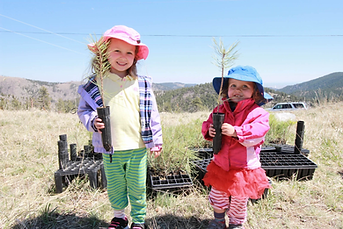 Two girls age 5 and 3 holding small tree saplings ready for planting.