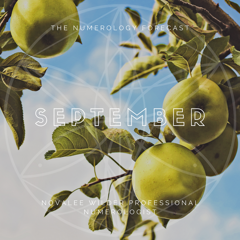 view of the sky through an apple tree, graphic for the numerology foreacst 2020 by novalee ilder