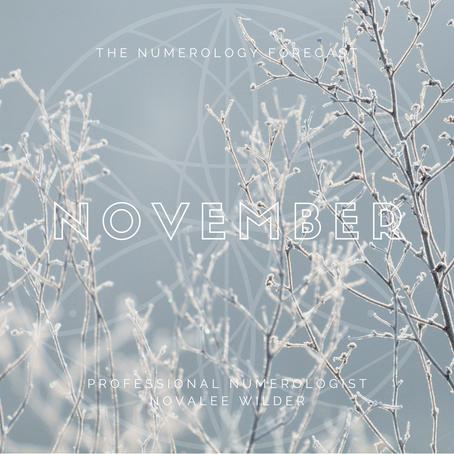 The Numerology Forecast - November 2020