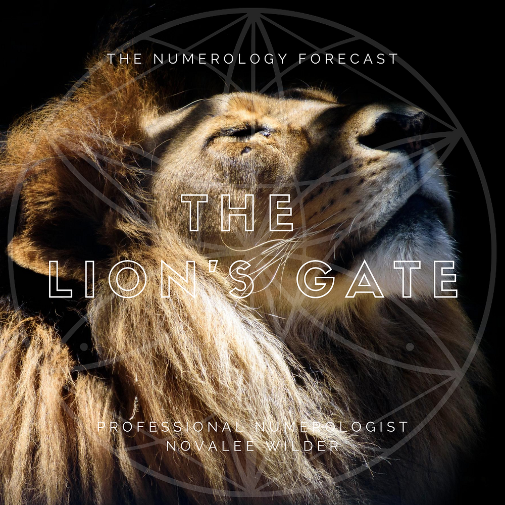 A male lion lifts it head towards the sun with closed eyes. The Lion's Gate Portal 8/8 by Professional Numerologist Novalee Wilder