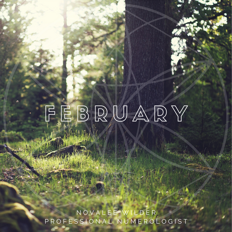 The Numerology Forecast - February 2020