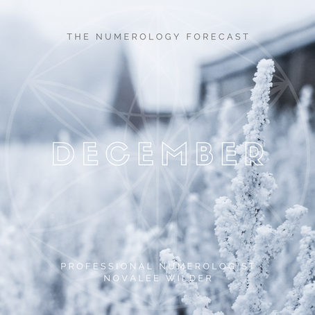 The Numerology Forecast - December 2020