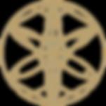gold lightcode logo transparant backgrou