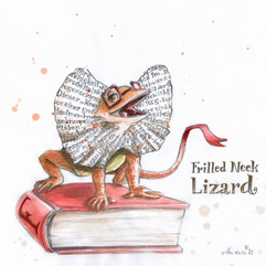 Frilled Neck Lizard (Kragenechse)