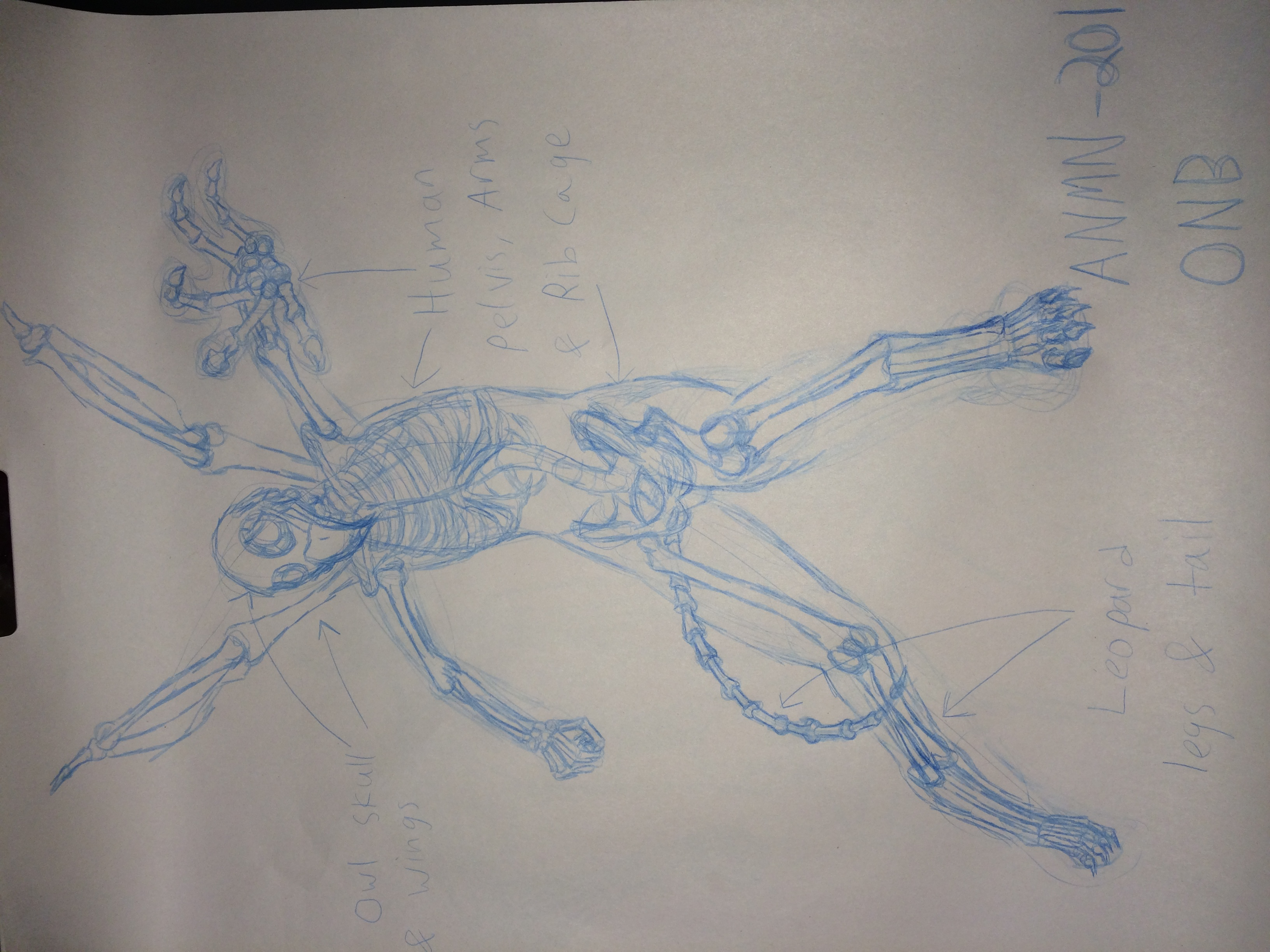Skeleton Hybrid