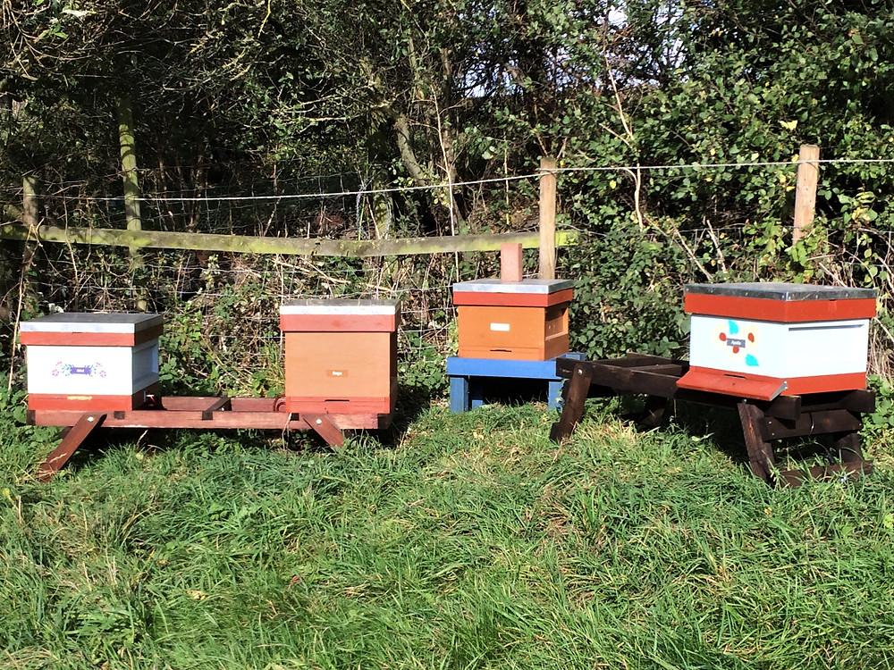 Bees at the Granary apiary