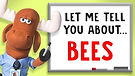 About Bees.jpg