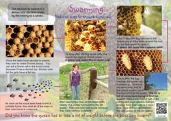 Swarming