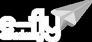 E-Fly Academy