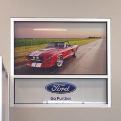 FordMustangPA270132.jpg